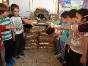 foto_proiect hrana pt.caini comunitari