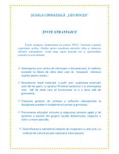tinte-strategice16